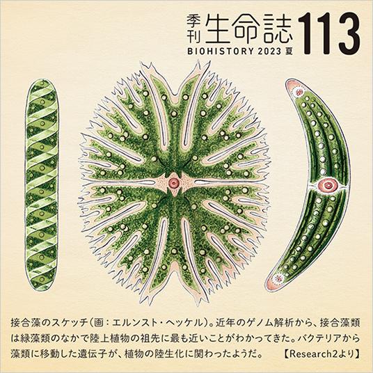 季刊「生命誌」 | JT生命誌研究館