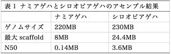 表1 ナミアゲハとシロオビアゲハのアセンブル結果