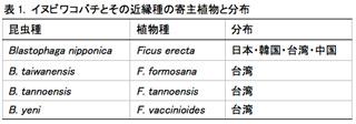 表1. イヌビワコバチとその近縁種の寄主植物と分布