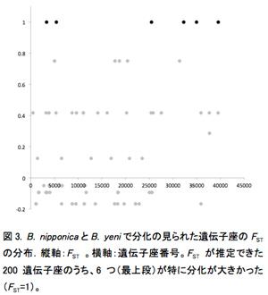図3. B. nipponicaとB. yeniで分化の見られた遺伝子座のFSTの分布.縦軸:FST 。横軸:遺伝子座番号。FST が推定できた200遺伝子座のうち、6つ(最上段)が特に分化が大きかった(FST=1)。